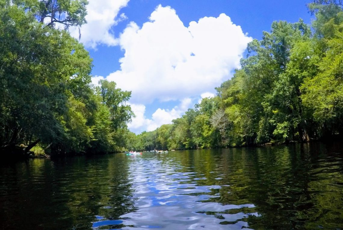 A view of the river along Ginnie Springs.