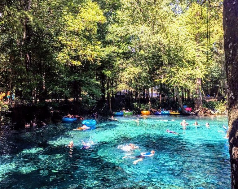 Swimmers float in the crystal clear water at Ginnie Springs