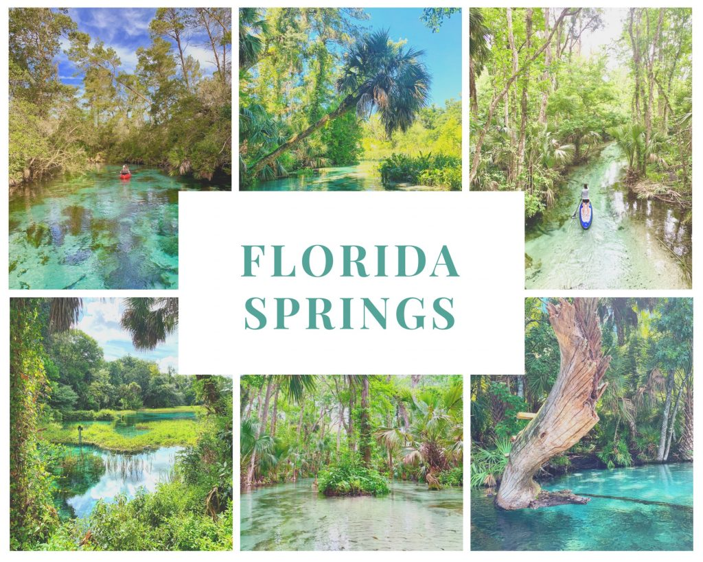 A collage of six different springs that are included on the map of Florida springs.
