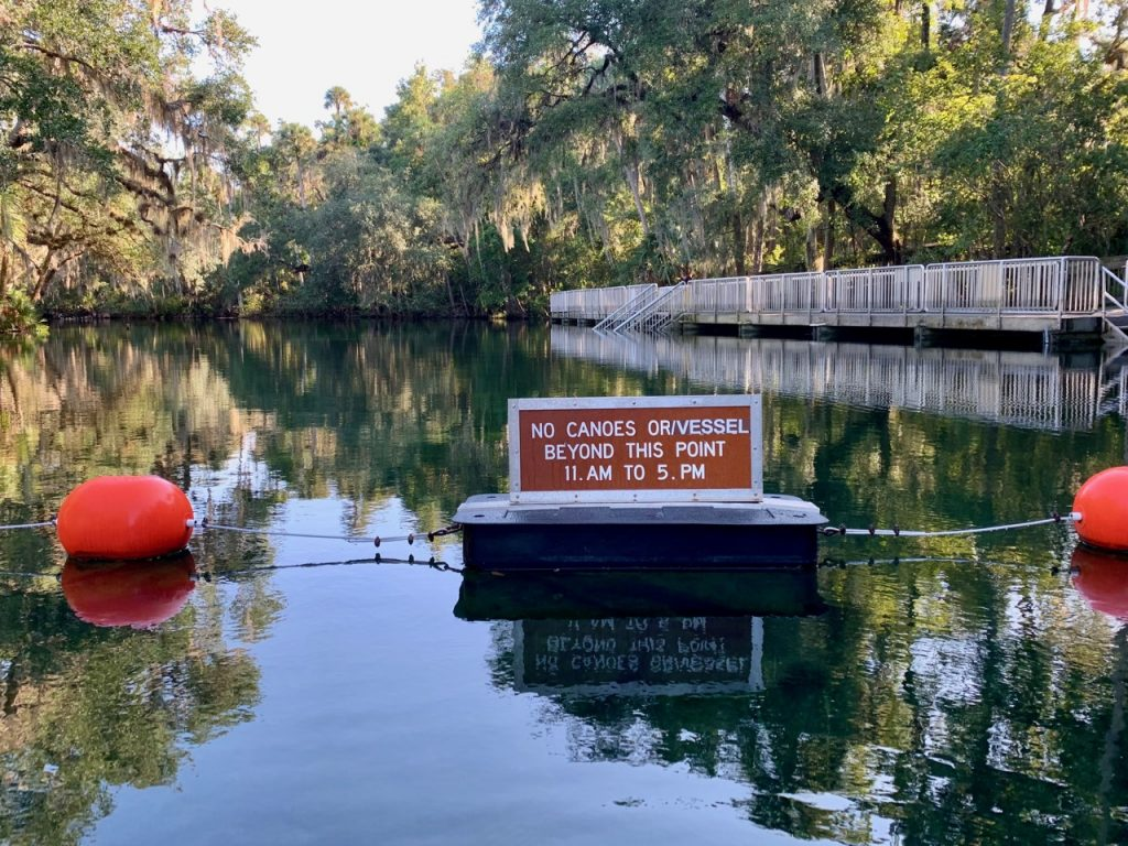 Kayaking Blue Springs must happen before 11 am according to this sign floating in the spring.