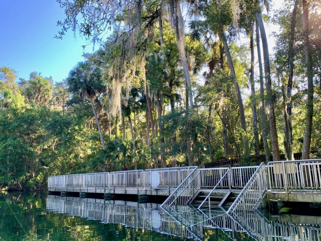 The main dock for swimming and tubing at Blue Springs